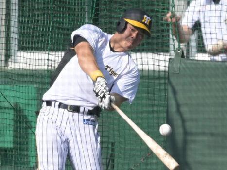 佐藤輝明の家族構成は父・母・弟2人!弟・太紀も野球選手で将来有望!